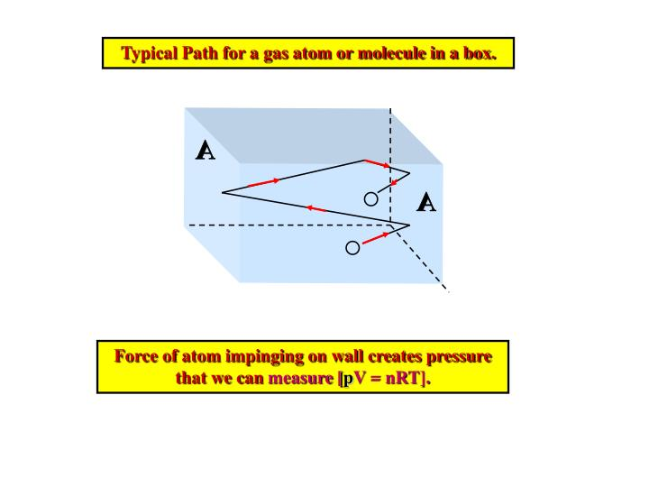 Typical Path for a gas atom or molecule in a box.