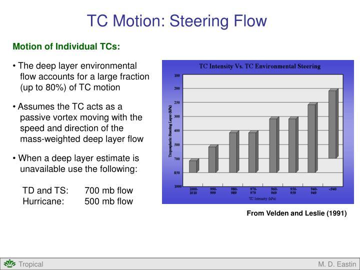 TC Motion: Steering Flow