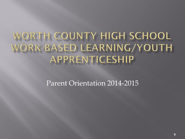 worth county high school work based learning youth apprenticeship n.