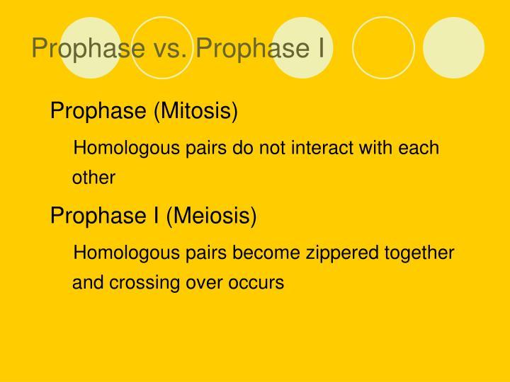 Prophase vs. Prophase I