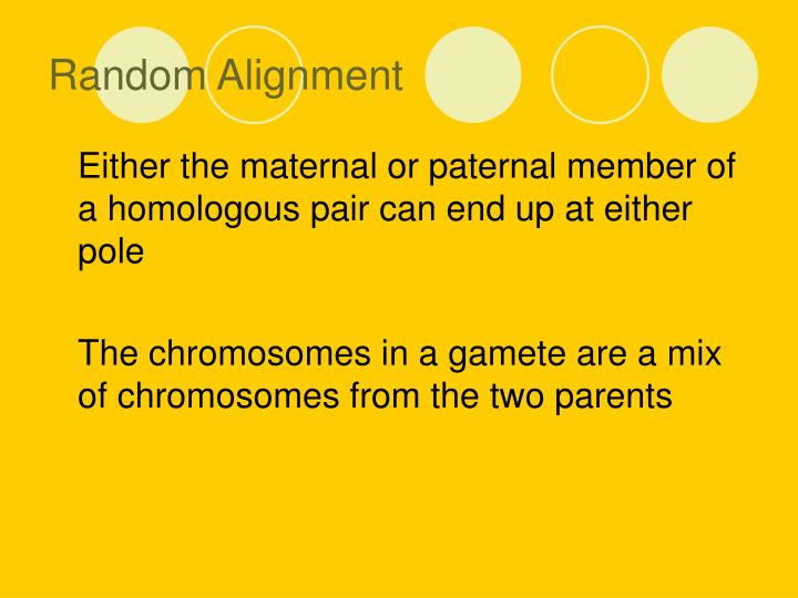 Random Alignment