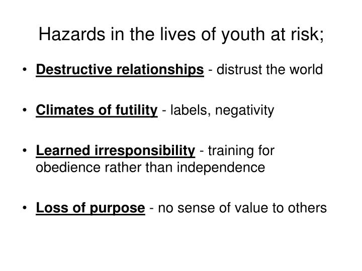 Hazards in the lives of youth at risk;