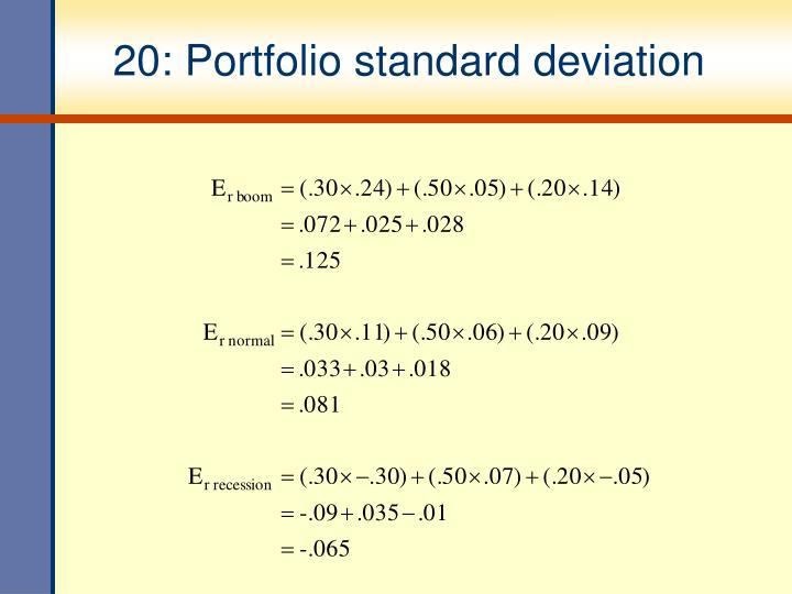 20: Portfolio standard deviation
