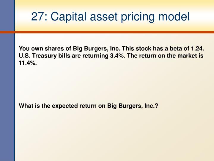 27: Capital asset pricing model