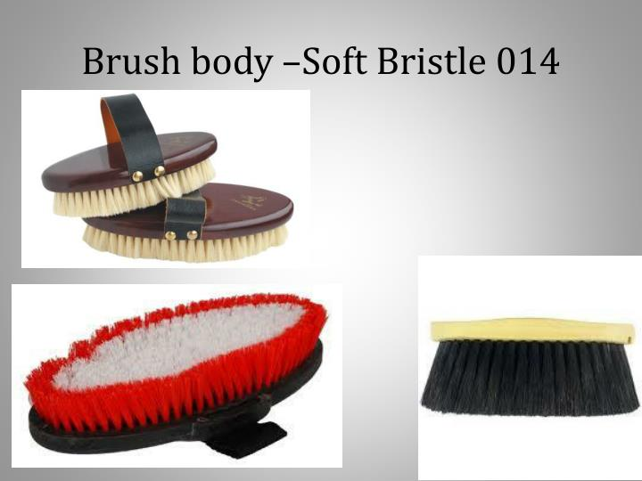 Brush body –Soft Bristle 014