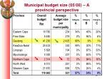 municipal budget size 05 06 a provincial perspective