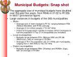 municipal budgets snap shot