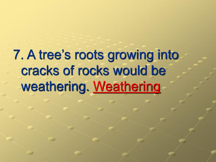 7. A tree's roots growing into cracks of rocks would be weathering.