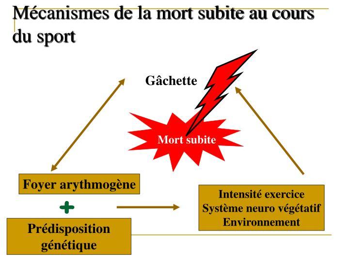 Mécanismes de la mort subite au cours du sport