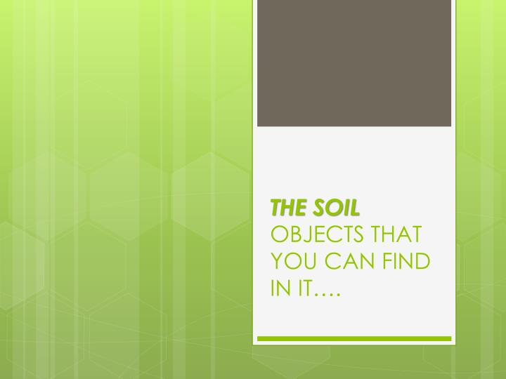 The soil objects that you can find in it