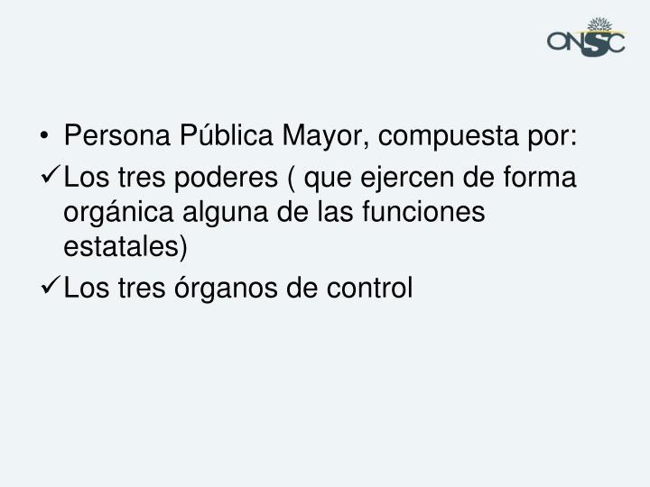 Persona Pública Mayor, compuesta por: