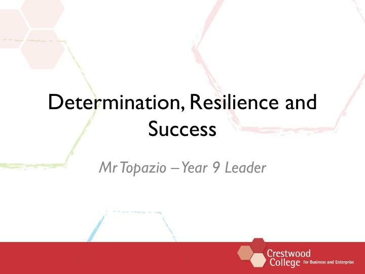 determination resilience and success n.