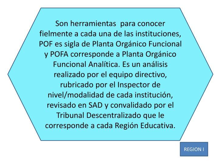 Son herramientas  para conocer fielmente a cada una de las instituciones, POF es sigla de Planta Org...