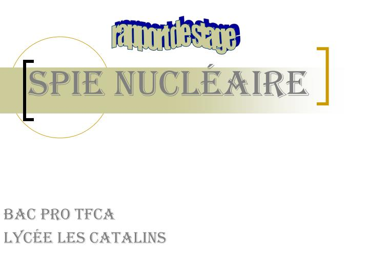 spie nucl aire n.