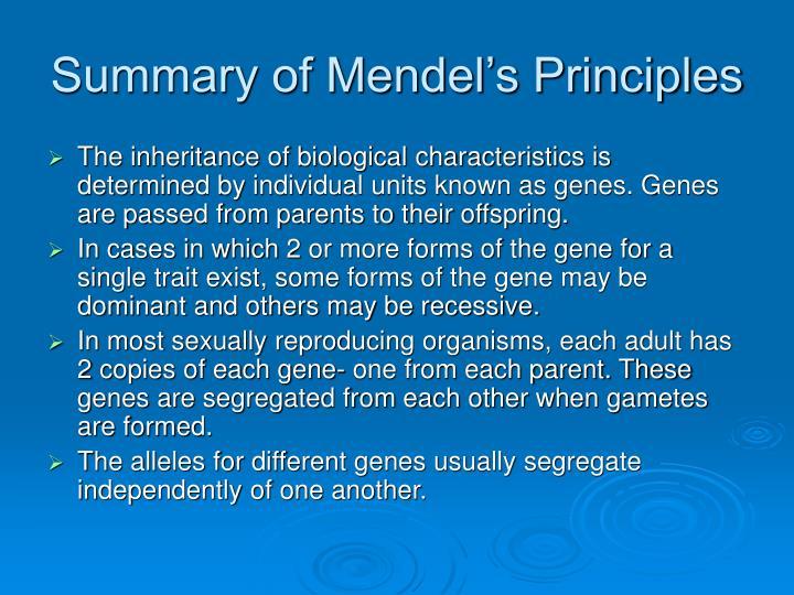 Summary of Mendel's Principles