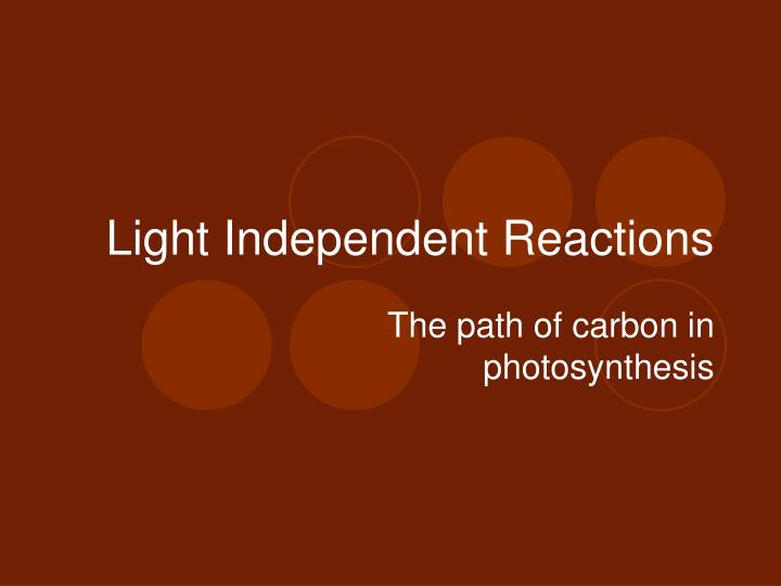 light independent reactions n.