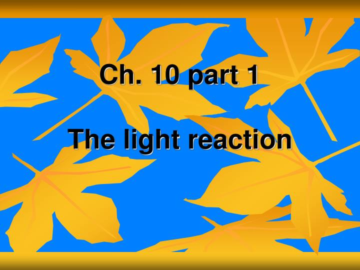 ch 10 part 1 the light reaction n.