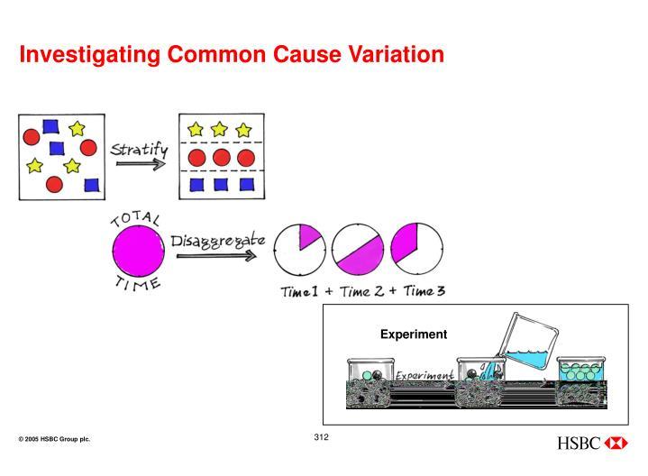 Investigating Common Cause Variation