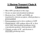 3 electron transport chain chemiosmosis