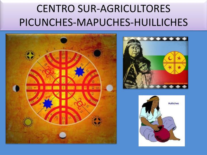 centro sur agricultores picunches mapuches huilliches n.