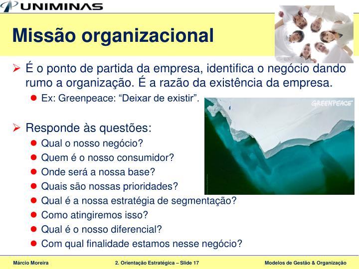 Missão organizacional