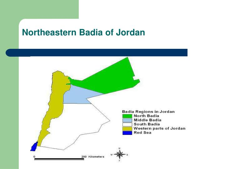 Northeastern Badia of Jordan