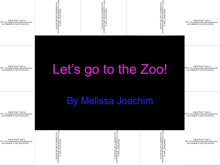 let s go to the zoo n.