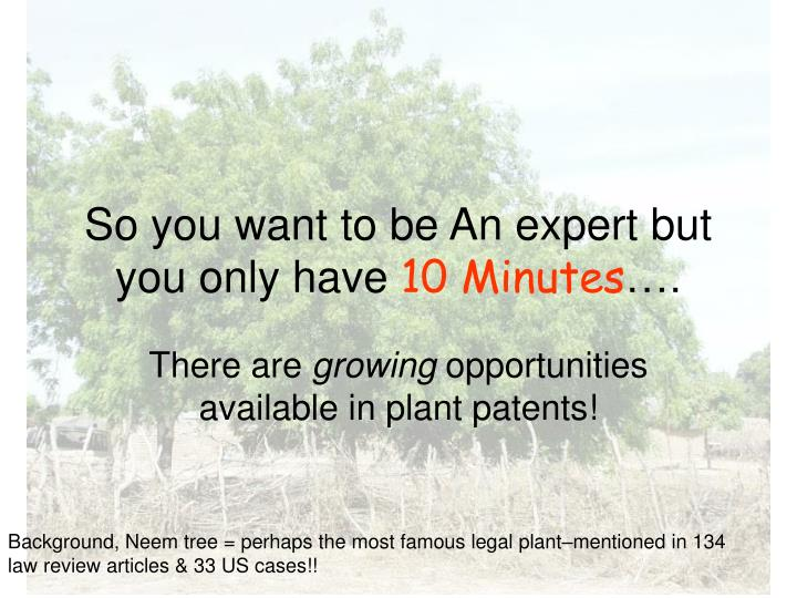 so you want to be an expert but you only have 10 minutes