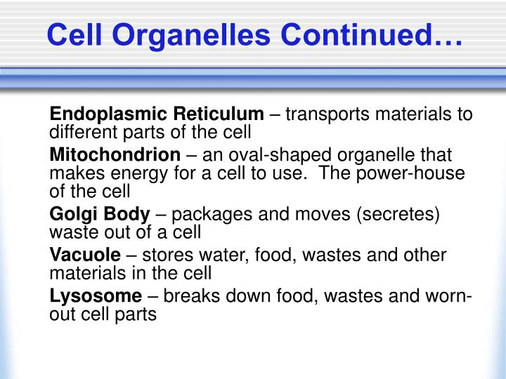 Cell Organelles Continued…