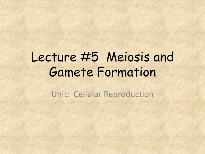 lecture 5 meiosis and gamete formation n.