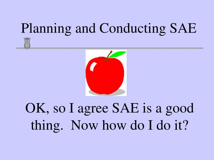 planning and conducting sae n.