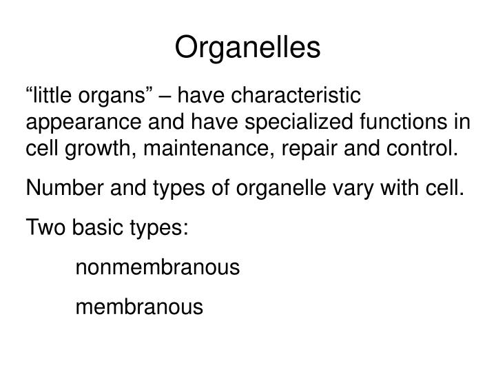 these perform special function in cellular growth maintenance and reproduction There are seven criteria for determining whether an object is living or non-living the seven characteristics of living things 1) homeostasis - internal regulation of.