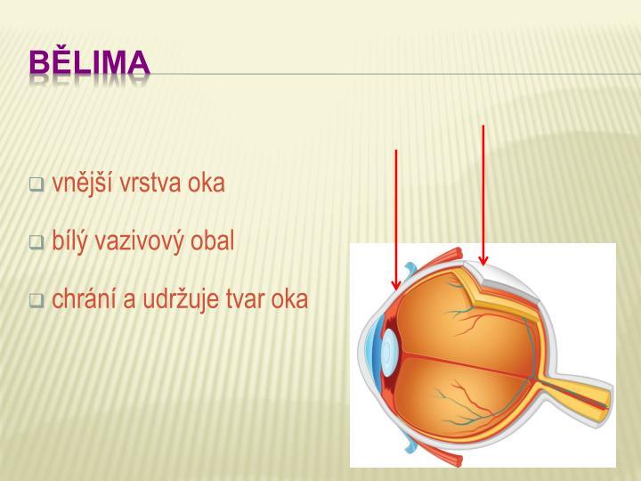 vnější vrstva oka