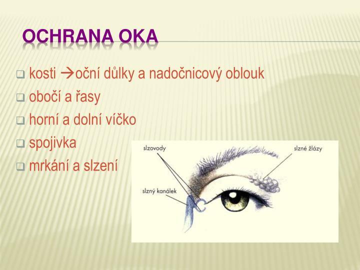 Ochrana oka