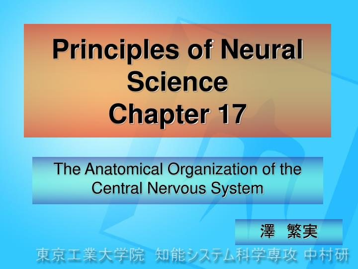 principles of neural science chapter 17 n.