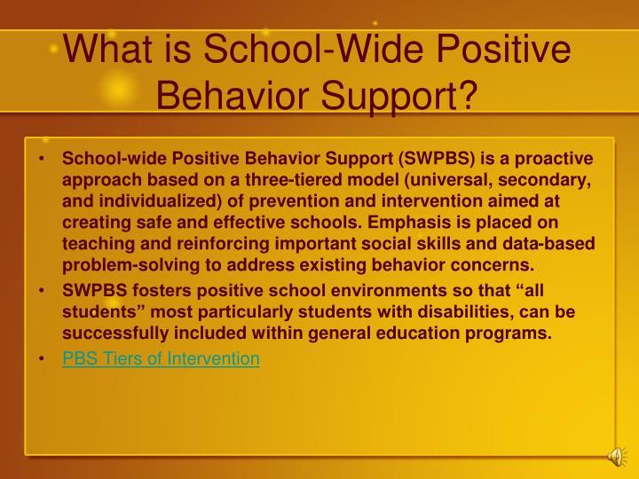 What is school wide positive behavior support