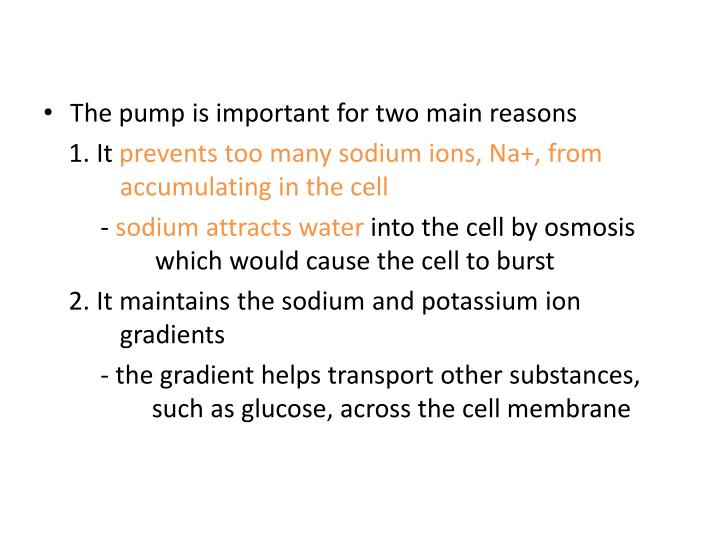 The pump is important for two main reasons