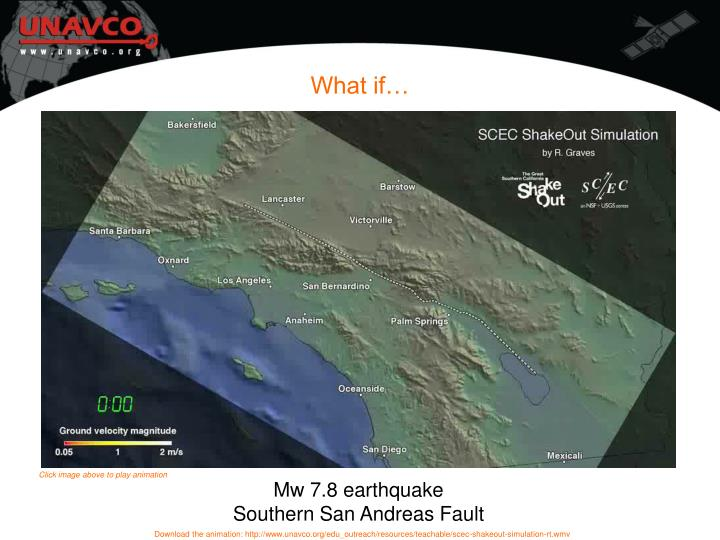 What is the shakeout