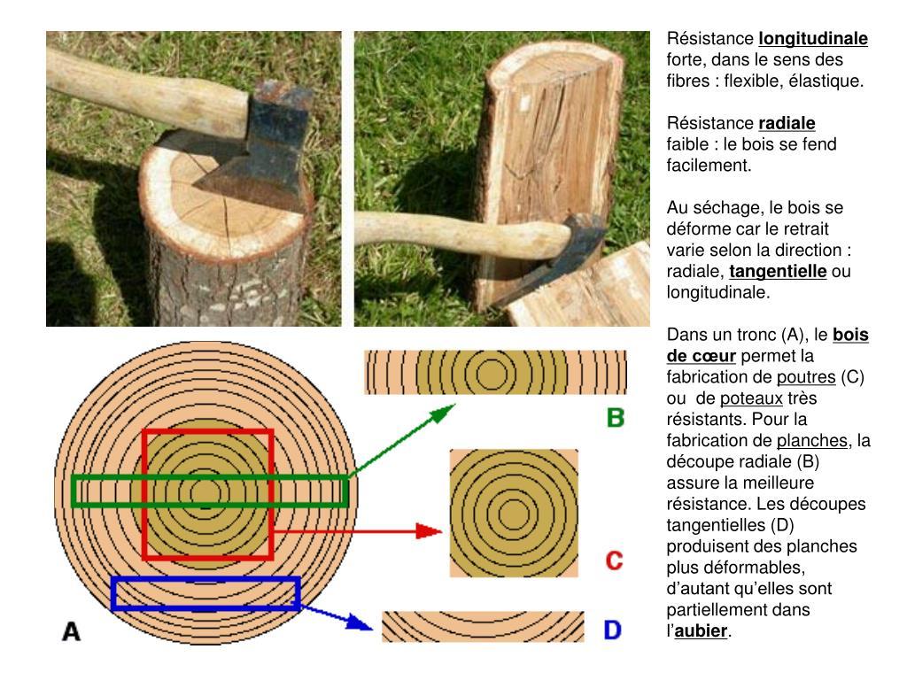 Poteau Bois Pour Terrasse ppt - le matériau bois powerpoint presentation, free