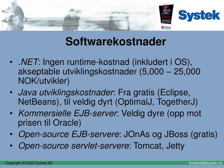 Softwarekostnader