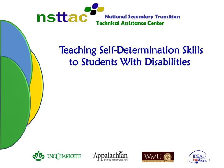 teaching self determination skills to students with disabilities n.