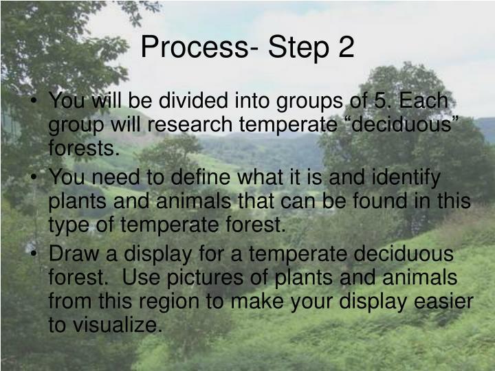 Process- Step 2