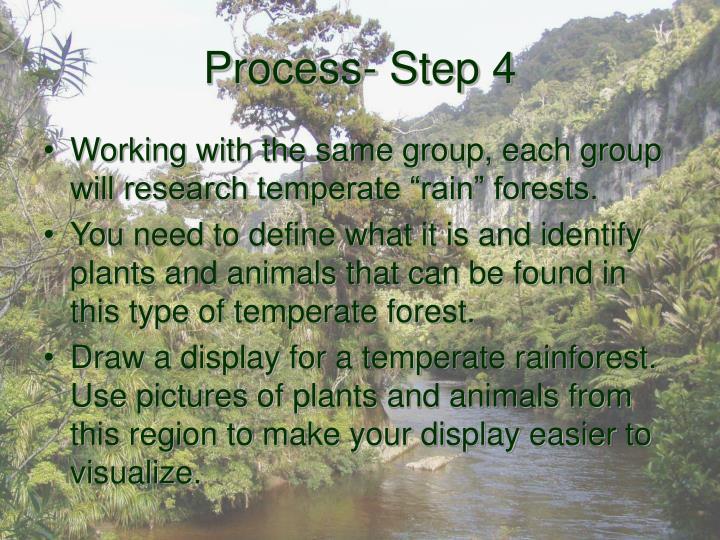 Process- Step 4