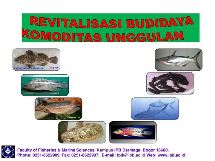 REVITALISASI BUDIDAYA