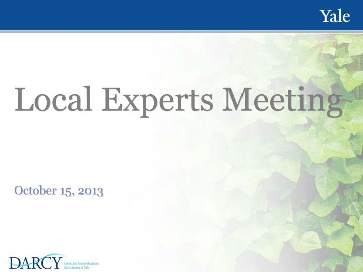 local experts meeting n.