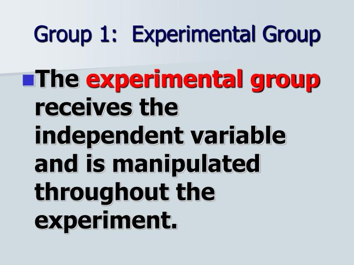 Group 1:  Experimental Group