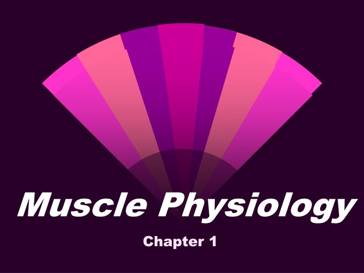 muscle physiology n.