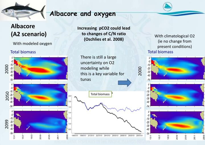 Albacore and oxygen
