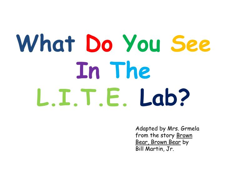 what do you see in the l i t e lab n.
