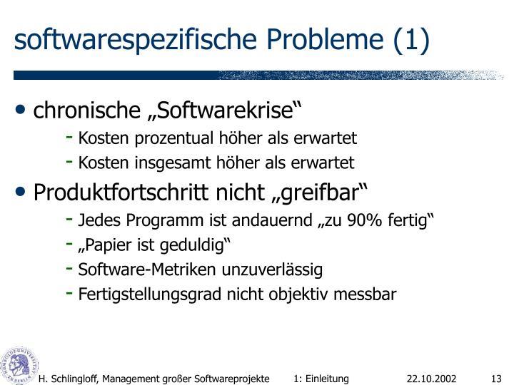 softwarespezifische Probleme (1)